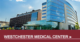 Westchester Medical Center - Button