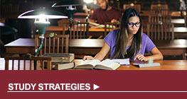 Academic Support Study Strategies